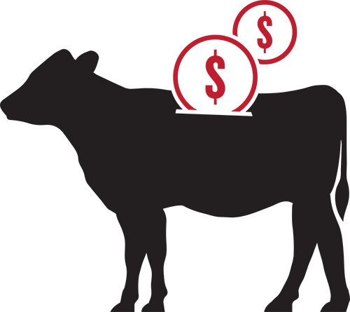 Economically managing bovine respiratory disease, with Zactran, is critical to maintaining a profitable herd.